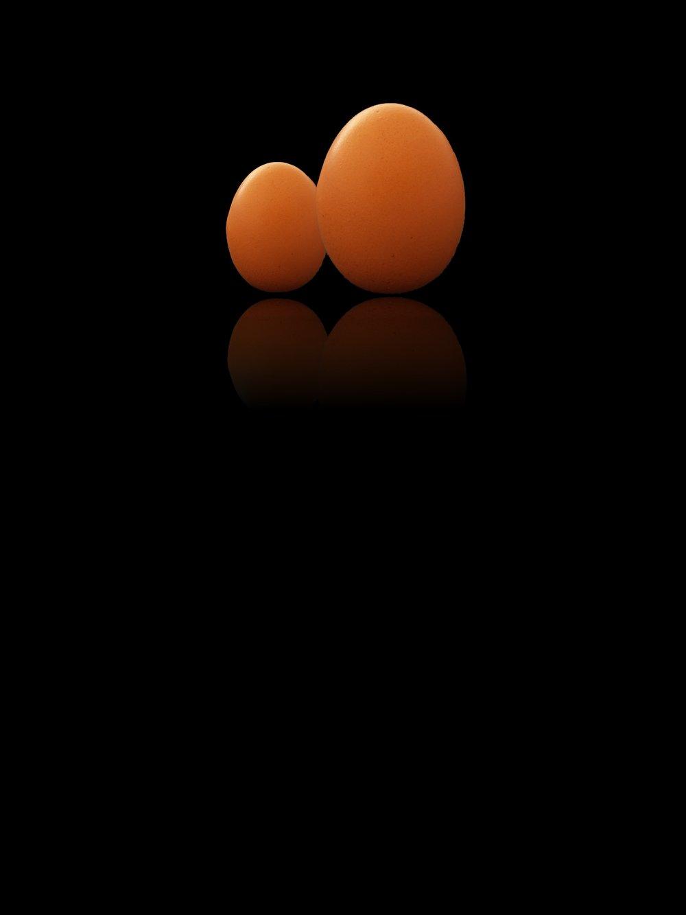 huevos 002.jpg