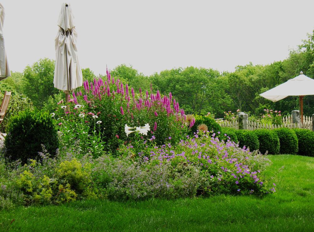 Morning Glory Gardens