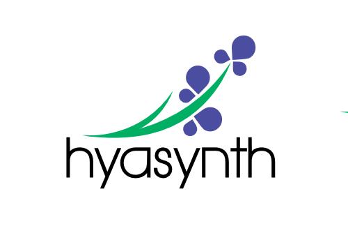 hyasynth_logo.png