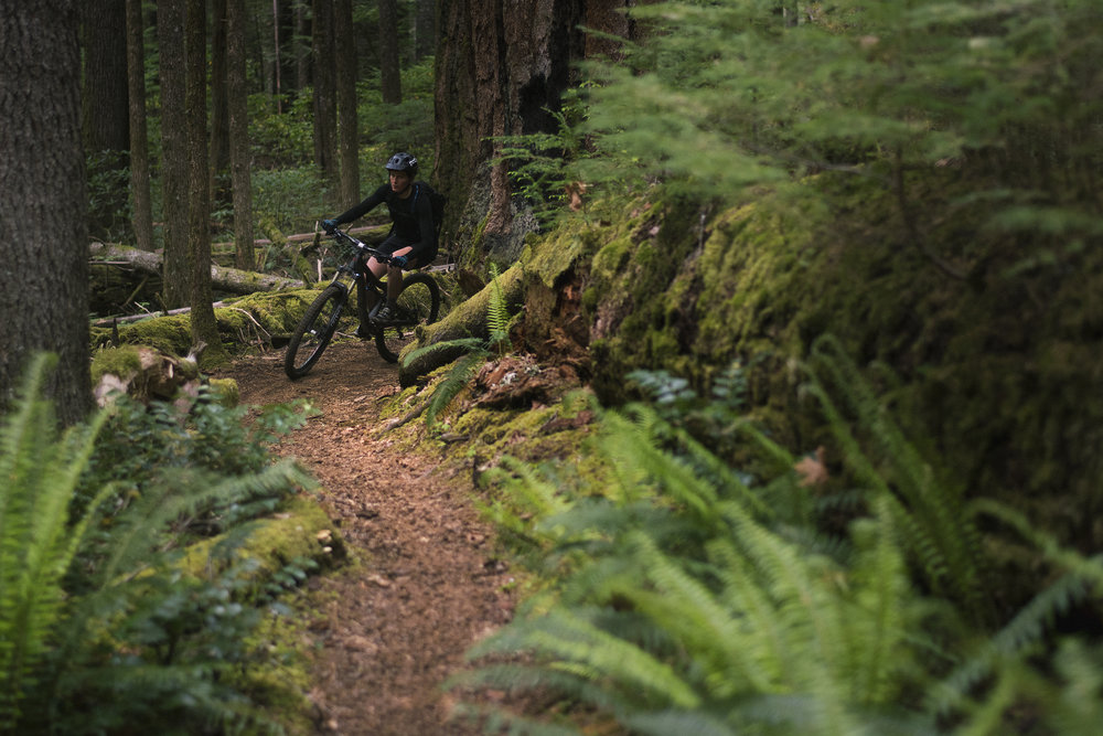 6) Statewide Wilderness Position - Stakeholders ranked this as one of the highest priority needs from a statewide organization. The desired statement would express the position of all groups on the closure of trails via changes in federal land designations. Over 150 miles of bike-accessible singletrack in Oregon has been closed due to Wilderness designations in the past decade, with over 300 miles at risk due to new proposals. In the face of this, most stakeholder groups sought the creation of a rallying point on this issue.Many stakeholders steward trails on federal lands faced with this potential closure, but feature no single point of contact of position on these proposals. The convening members shared optimism that a mutually agreed upon position would help them preserve existing recreational access in the face of these threats and also better equip themselves to engage with elected officials.
