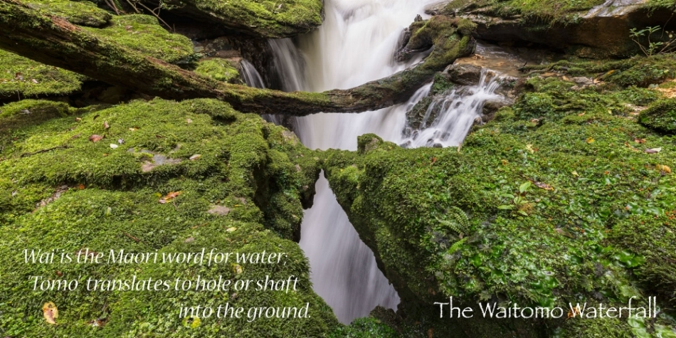 Waitomo-Book----Final-Edition-web-PDF-3.jpg