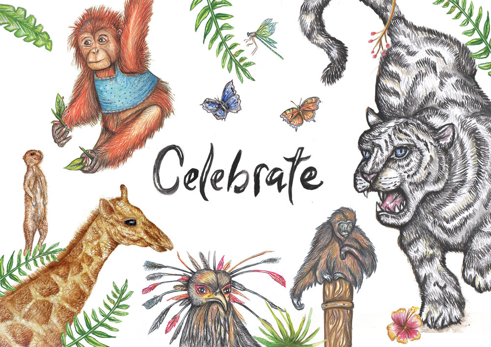 Zoo themed greetings card