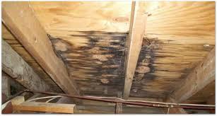 attic.jpeg
