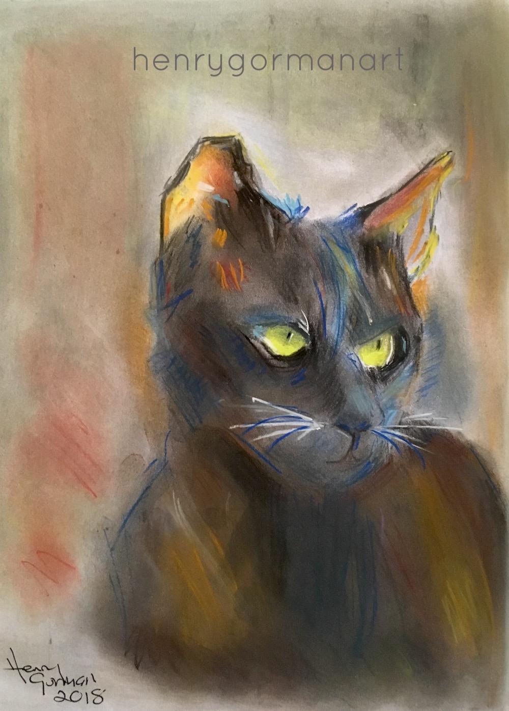 'Kitty'