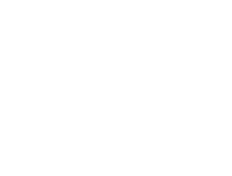 logo-sundance white.png