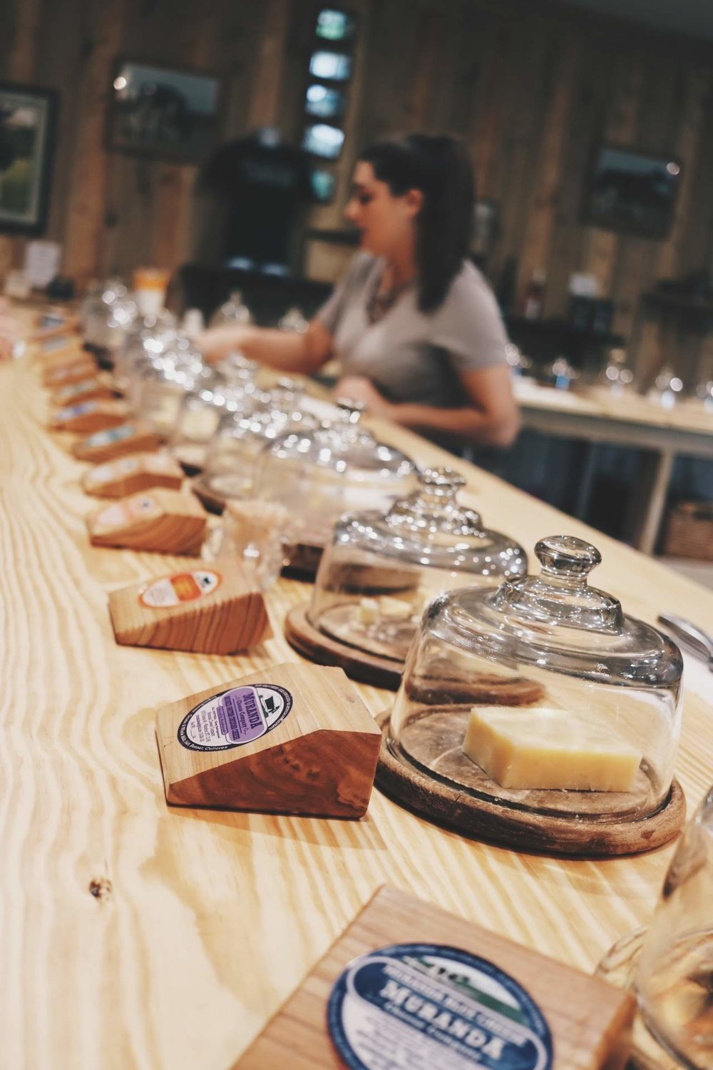 picture of cheese on tasting bar