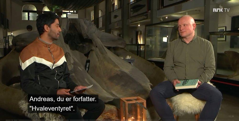 Norge nå.JPG