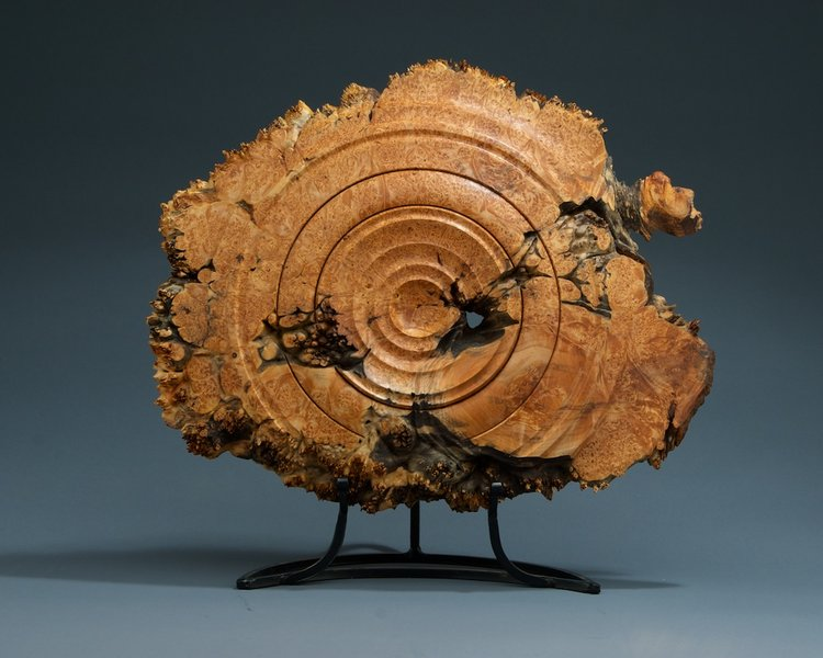 Maple burl wall hanging