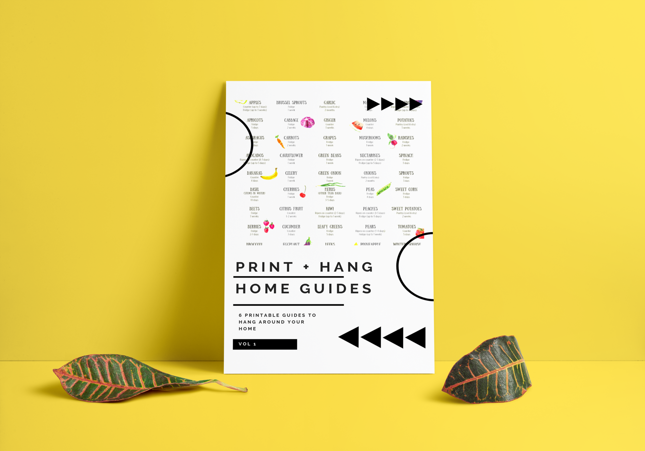 photo about Printable Guides titled PRINT + Hold Residence Textbooks creativholistic