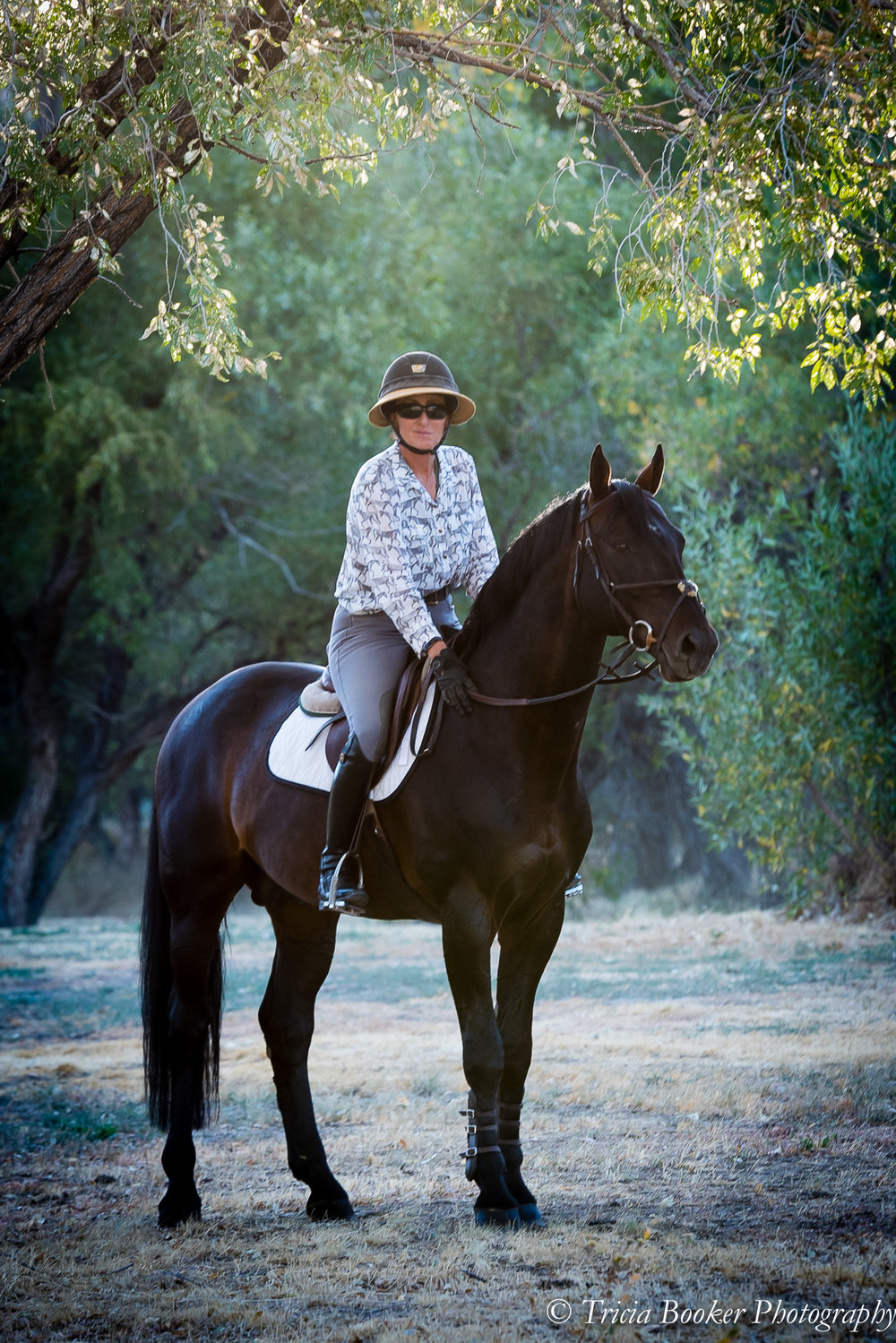 "A Passion For Education - ""Although I've spent my life based in Nevada, I travel the country extensively teaching, judging and volunteering my time for the betterment of the sport. I've served on countless USEF and USHJA committees that focus on education, including those that educate our licensed officials, professional trainers and emerging athletes, just to name a few. My passion is education and improving the lives of humans and horses alike."" — Julie Winkel, Goodtoknow Horses CEO"