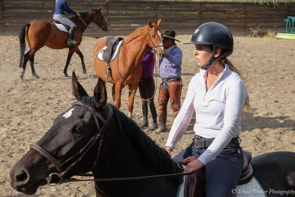 Riding participants working with Jose Alejos and the young horses