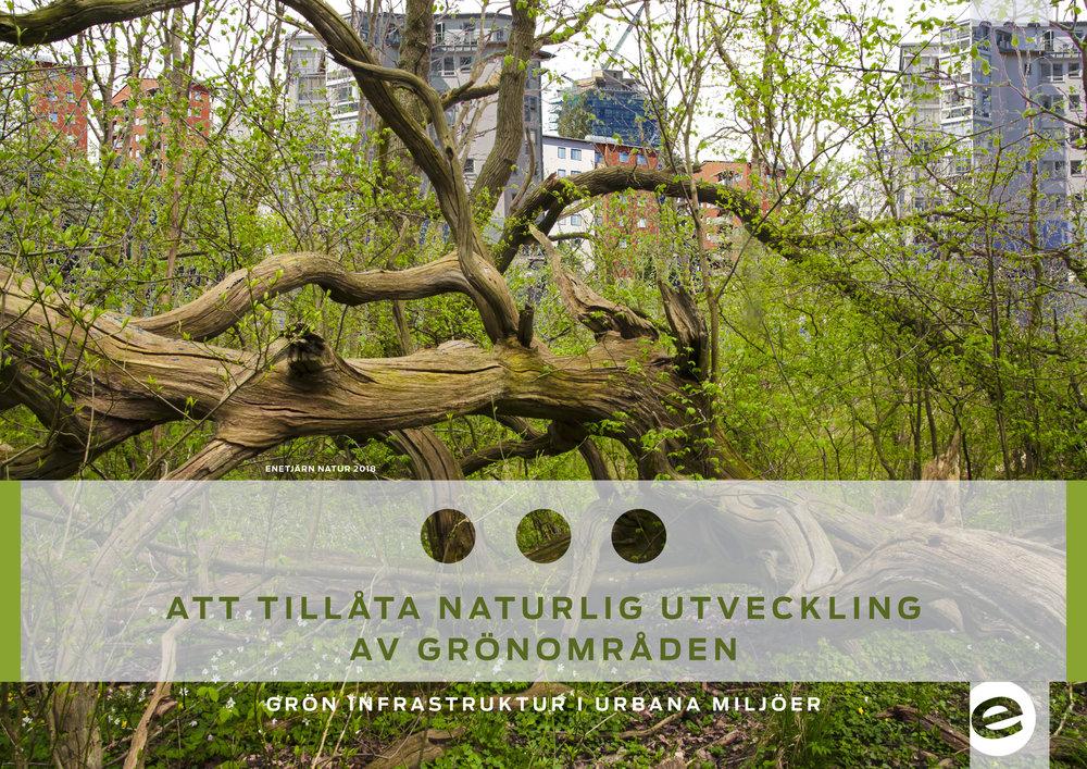 Handbok om att tillåta naturlig utveckling av grönområden