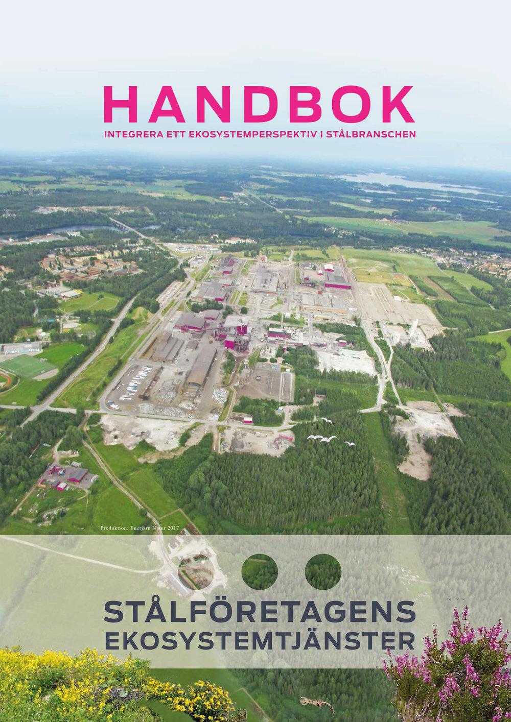 Handbok om att integrera ett ekosystemperspektiv i stålbranschen