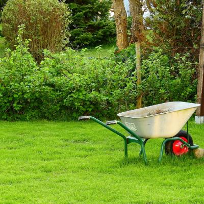 Lawn & Garden Supplies -
