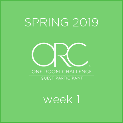Spring 2019 ORC Guest Participant week 1.png