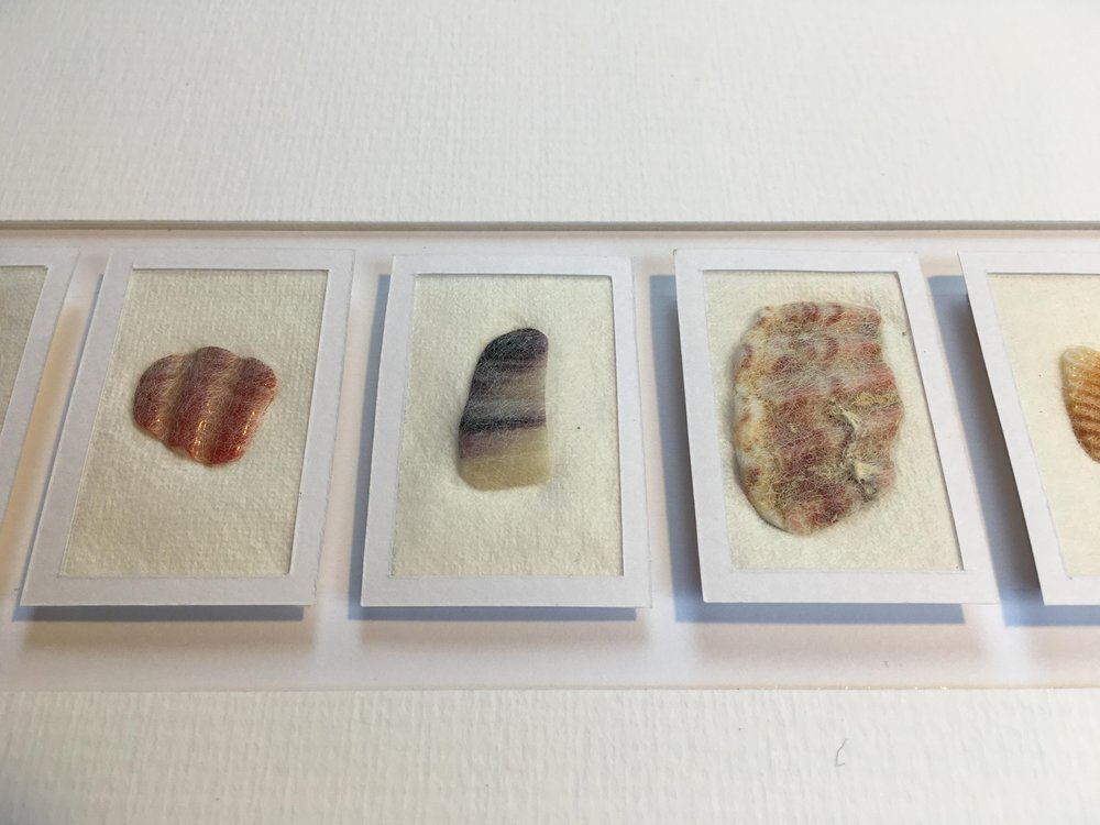 shells detail 1.JPG