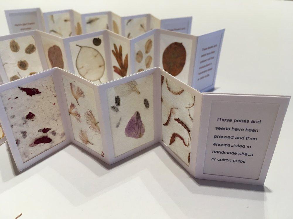 miniature folding books.JPG