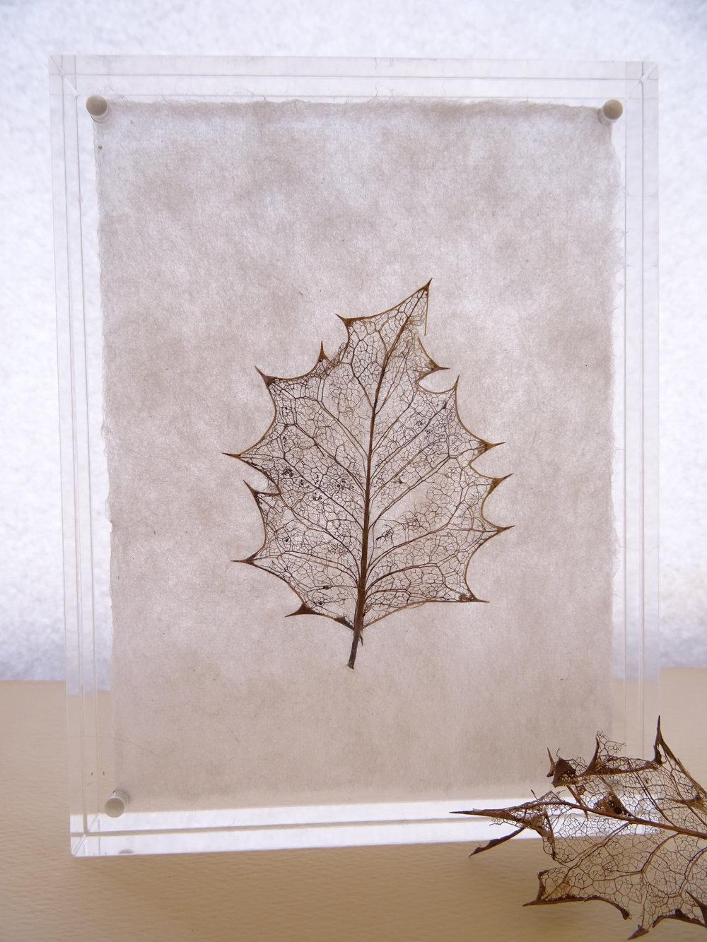 acrylic frame holly.JPG