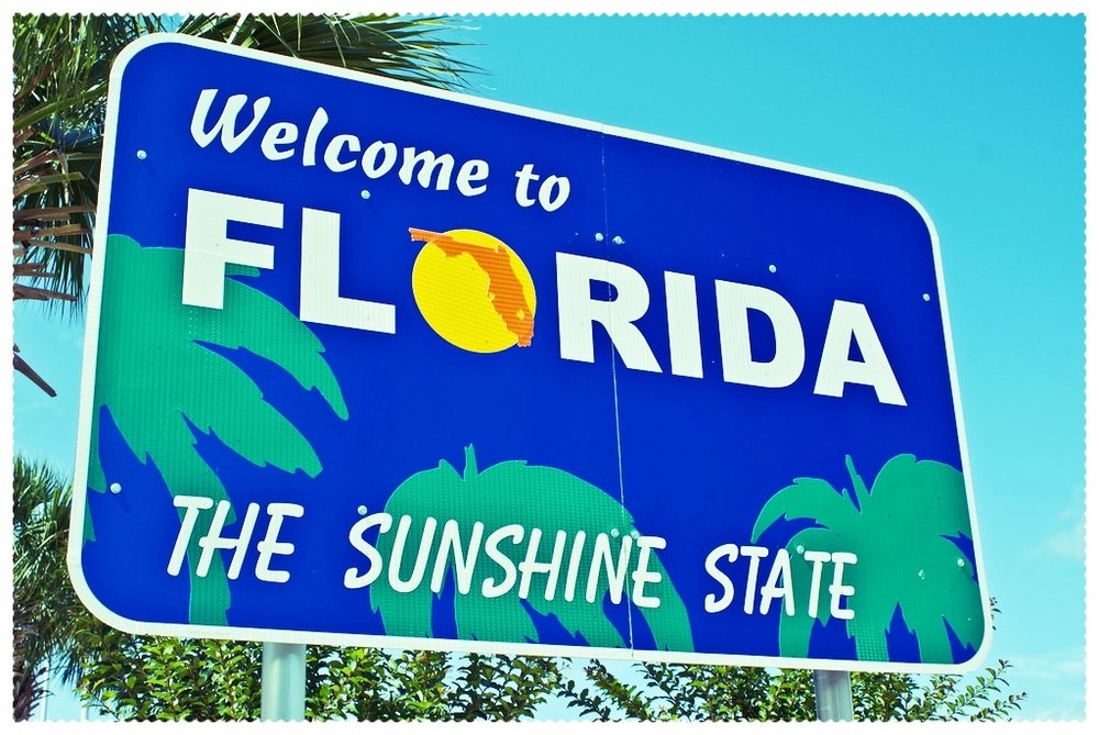 WTF - Welcome To Florida  (Original Web Series)
