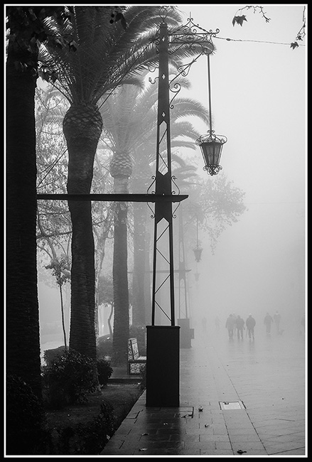 Linares Boulevard   Fuji XT1 with Fujinon XF 35mm f/1.4 R © 2018 Miguel Witte
