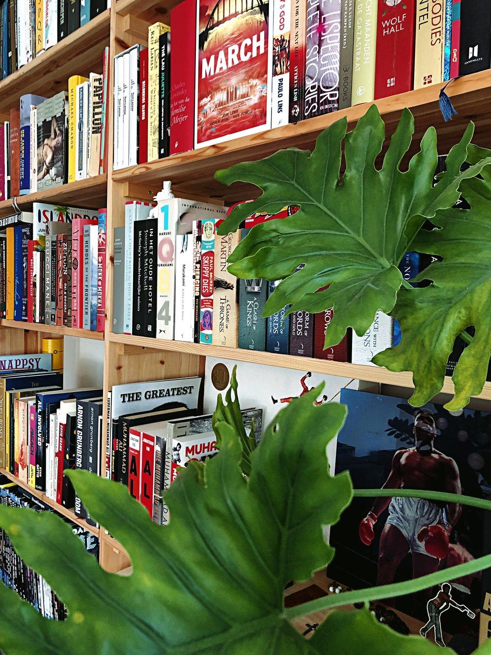 - Met literair agent Stijn kun je twee uur lang over boeken praten en uiteindelijk nog steeds tijd tekort komen om alle literaire onderwerpen aan te snijden. Hij geeft de beste boekentips op zijn Instagram en heeft schrijvers Dave Eggers en David Sedaris meerdere keren gezien. Dit keer: Lees een boek met Stijn de Vries.