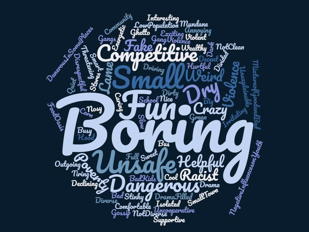 We asked teenagers from the Boys & Girls Club on 9/18/2018 to use 5 words to describe how they view our community. This is the word cloud that created.