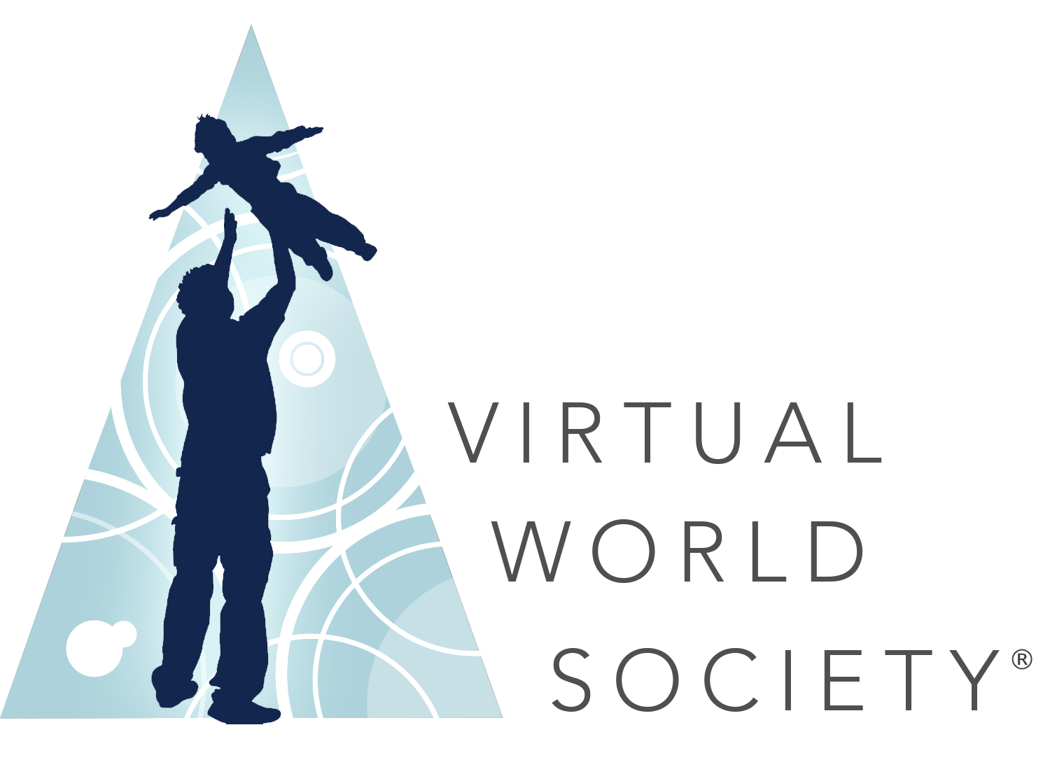 Virtual World Society