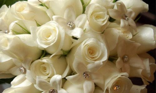 whitebunchroses.jpg