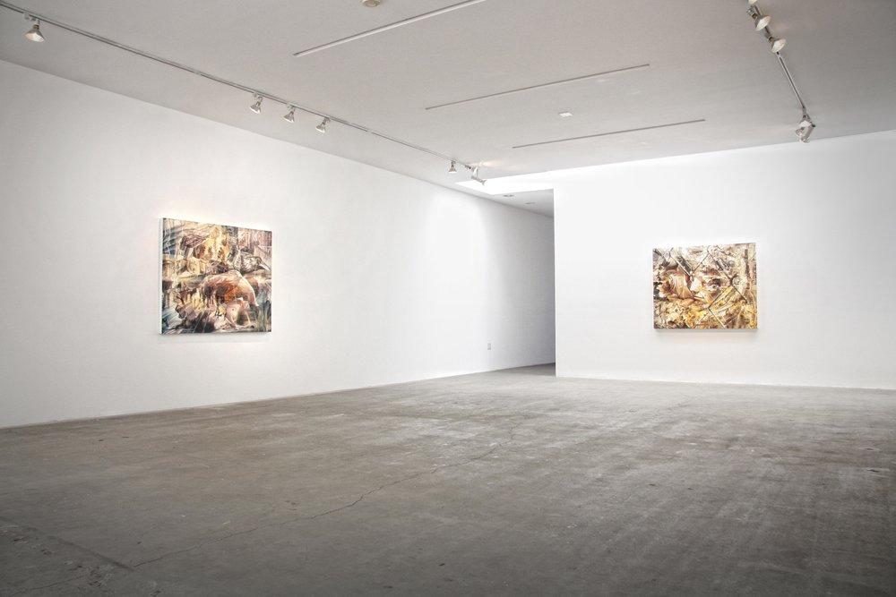 Chad Robertson Artist 2010-2011 Installation 003