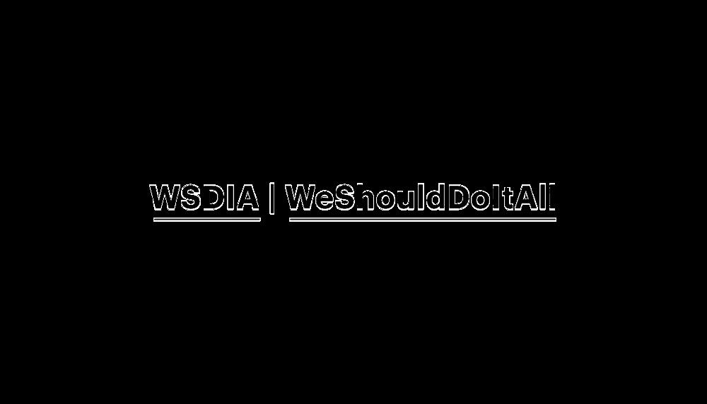 WSDIA_partner.png
