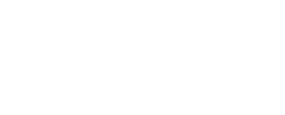 Sponsor_logo_NZ_Human_rights_white.png