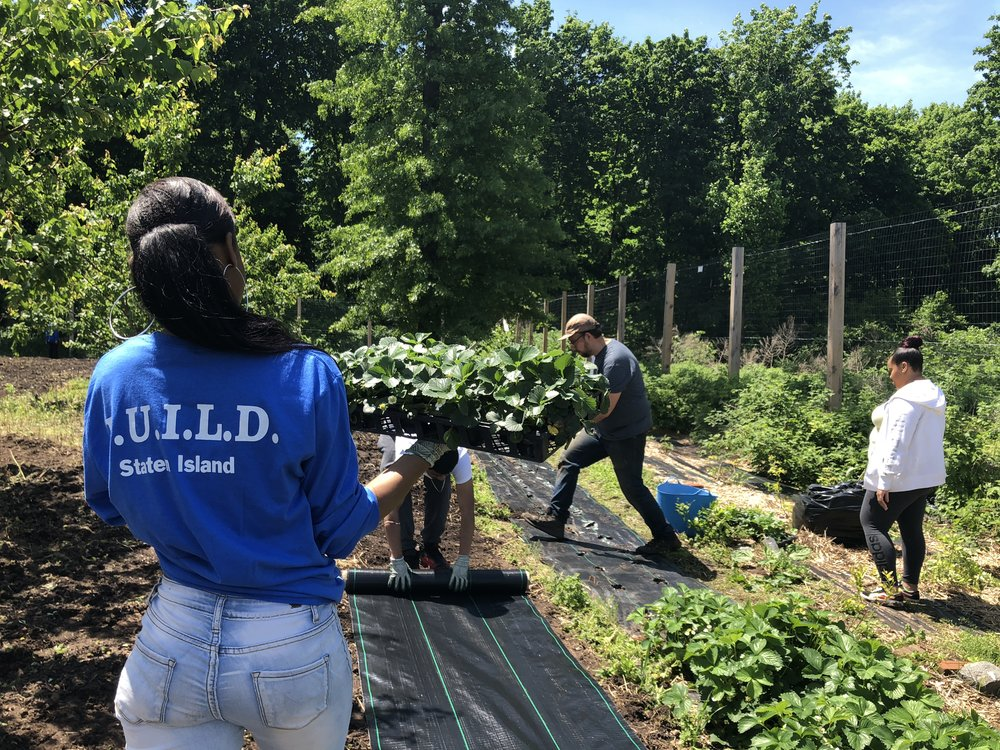 YouthB.U.I.L.D. Staten Island preparing the grounds for planting