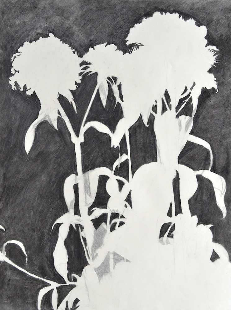 "Perceptual Drawing – Negative Space, Charcoal, 24"" x 18"""