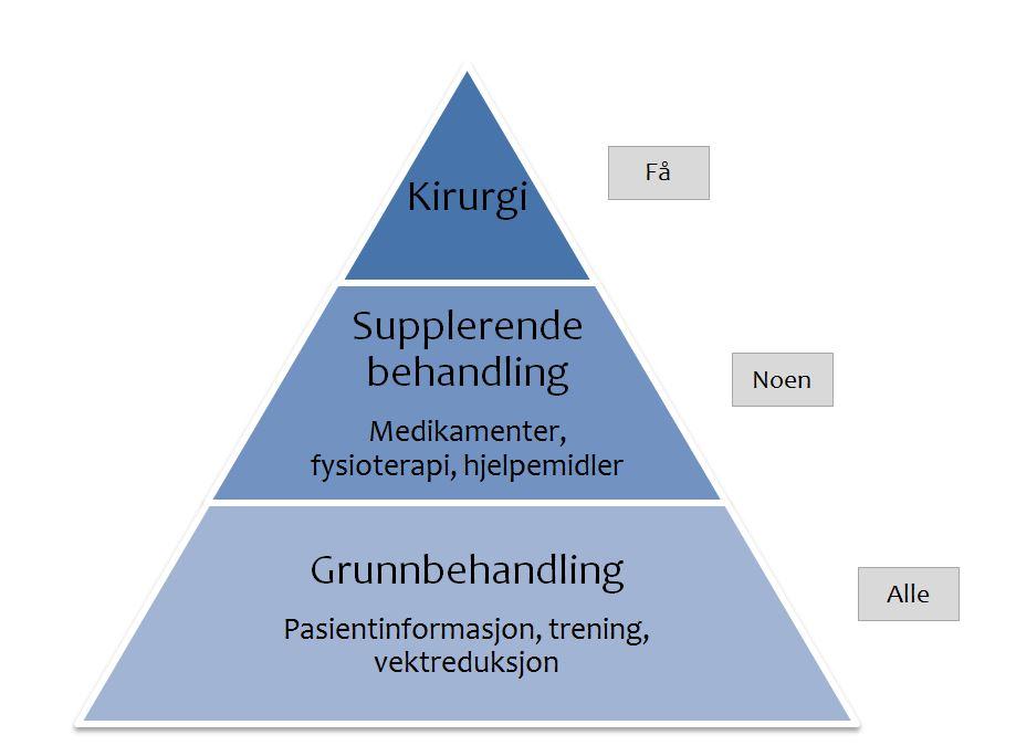 behandlingspyramide.jpg