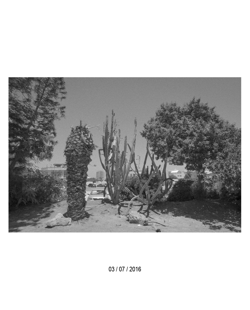 03.07.jpg