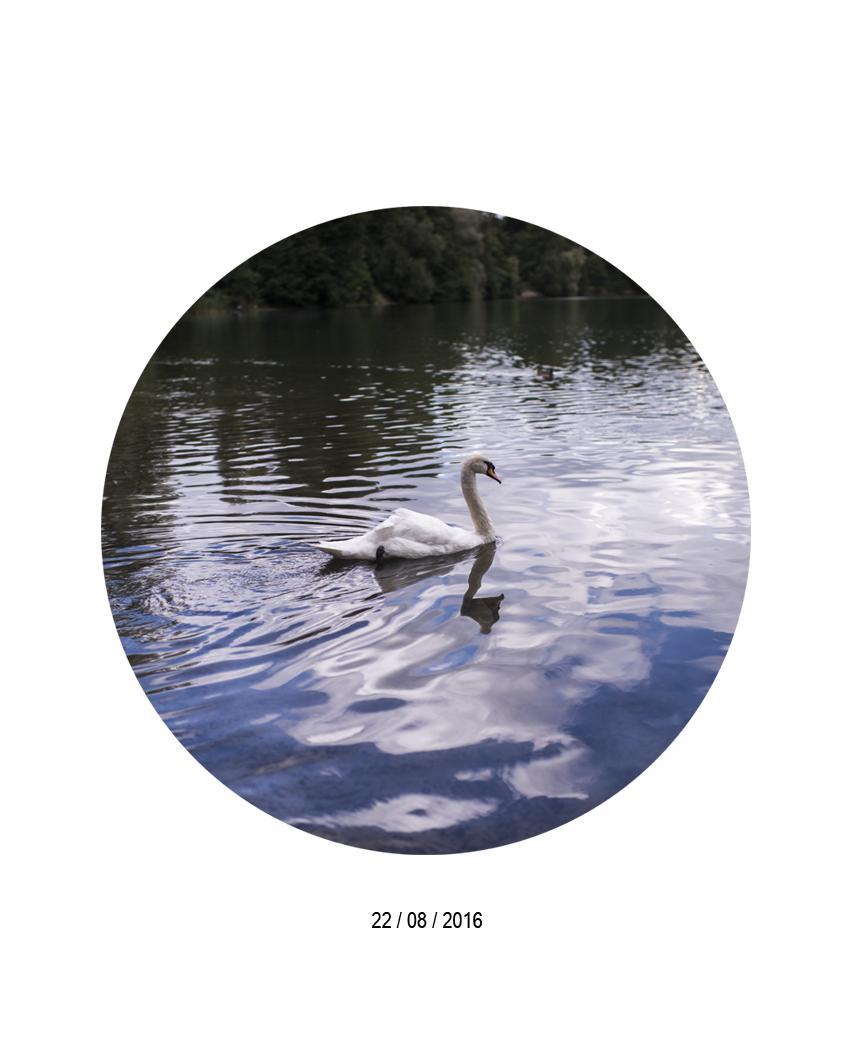 22.08.jpg