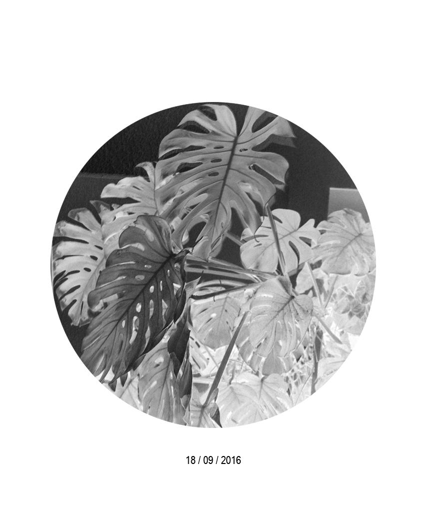18.09.jpg