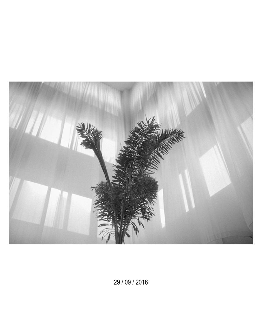 29.09.jpg