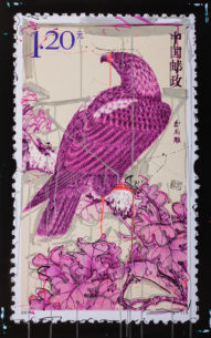 birdweb-191x305.jpg