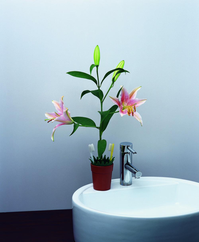 bsign-accesorios-productos-baño-maceta-foto