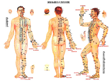 Acupuncture-picture.jpg