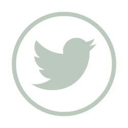 icons8-twitter-1000 (1).png