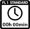 FL1_ANSI_ICONS-01_RunTime copie.jpg