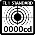 FL1_ANSI_ICONS-01_PeakBeamIntensity copie.jpg