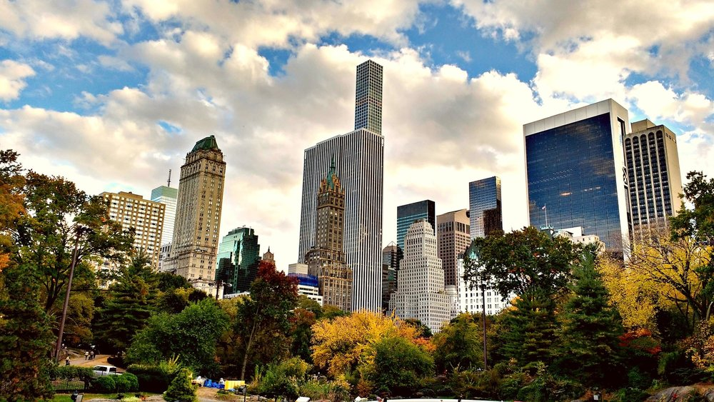 central park supreme travel resa till new york.jpg