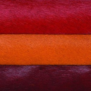 Cavallini_Colors_CMYK.jpg