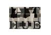LitHub_logo.png