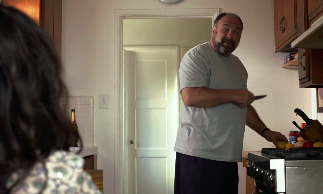 james-gandolfini-in-enough-said-movie-10