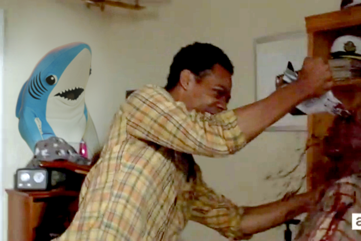 left-shark-on-wall-lead1.png