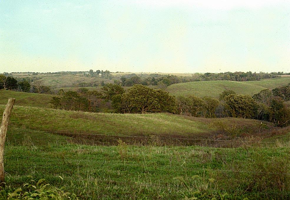 Prairie Kansas